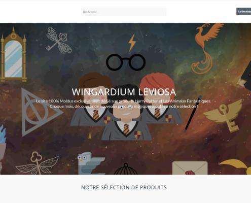 Wingardium Leviosa - Une création original de Wecode.fr